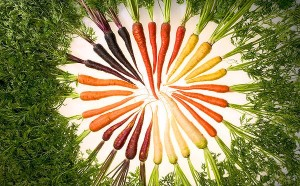 Carrots coloured 2 mar 12